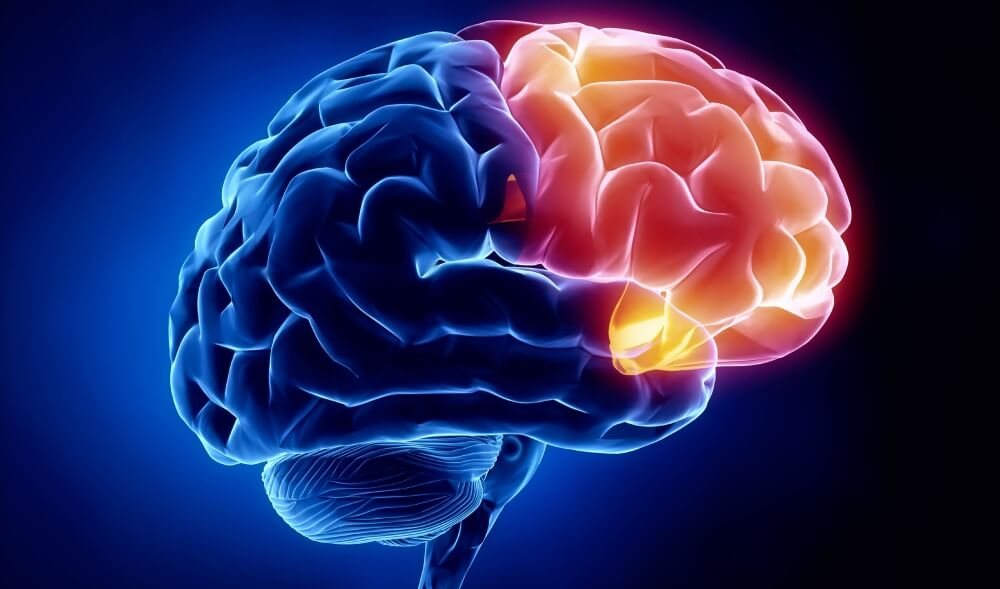 Neurology - Best Brain Doctor In Amritsar | Mental Specialist Hospital In Amritsar